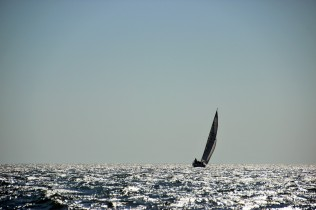 Robben Island (28)